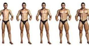 برنامج تدريب كمال اجسام للمبتدئين