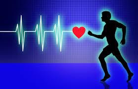 القلب القلبي