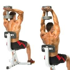 Over head dumbbell extention