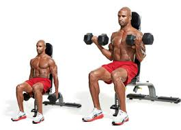 Seated dumbell curl